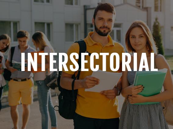 Intersectorial